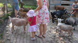 Mutter und Kind im Zoo