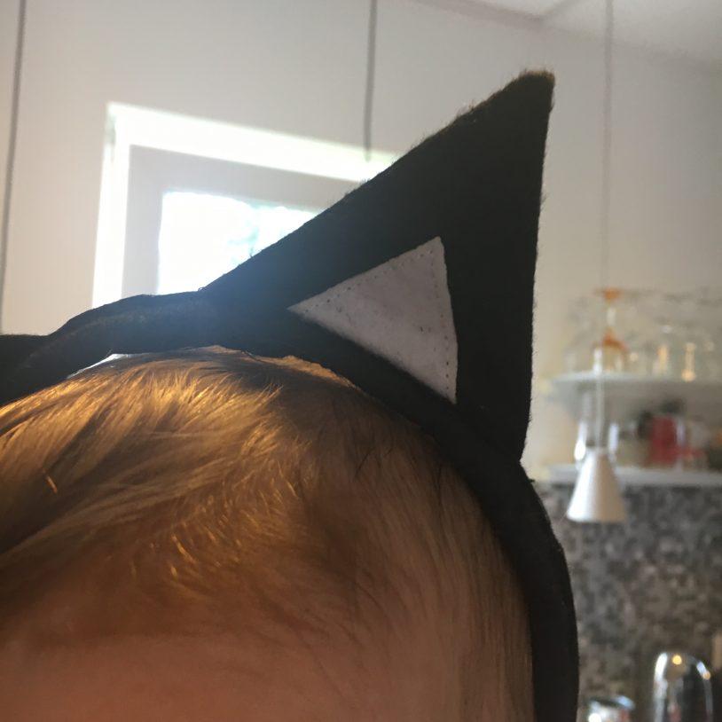 Katzenohren