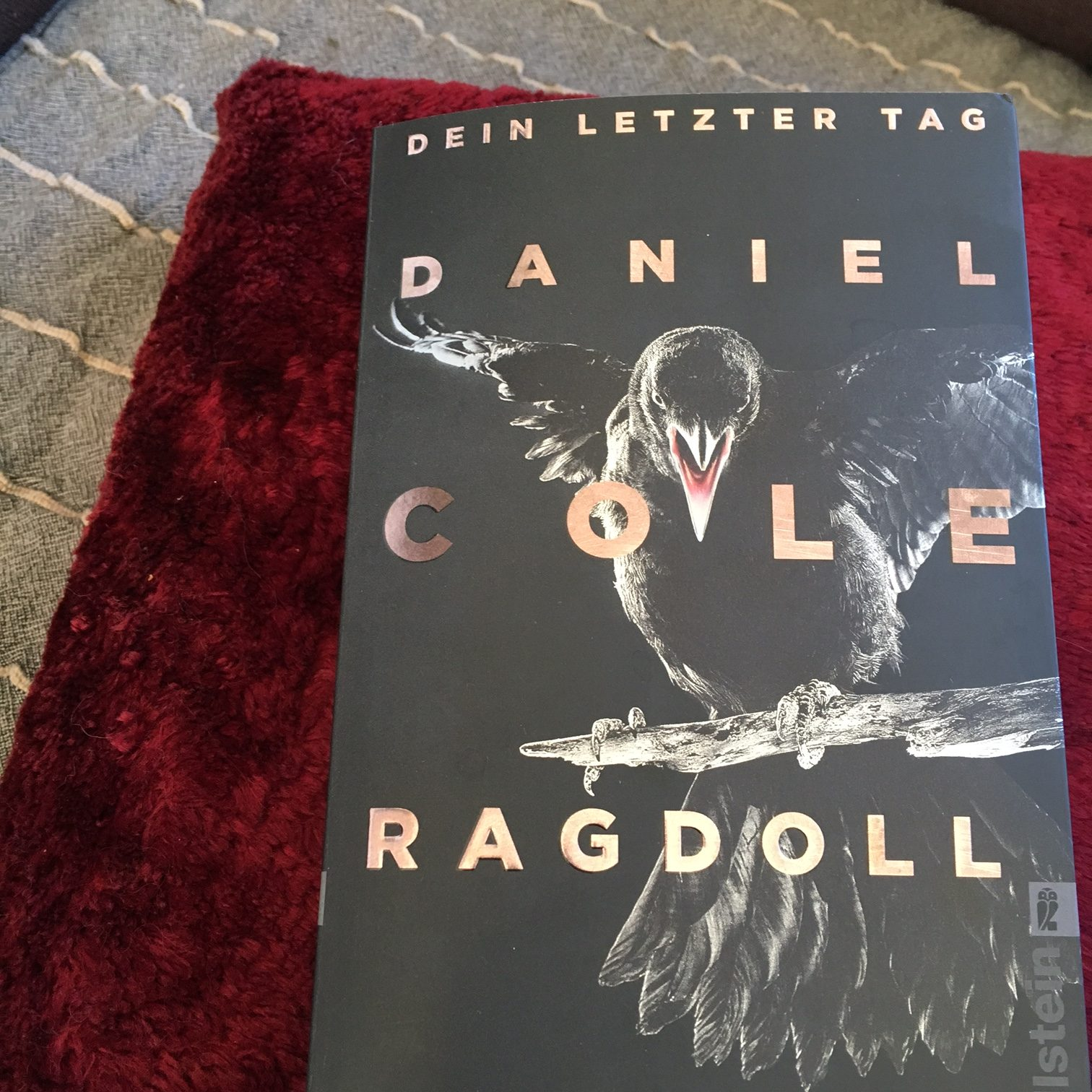 Daniel Cole Ragdoll. Dein letzter Tag Krimi